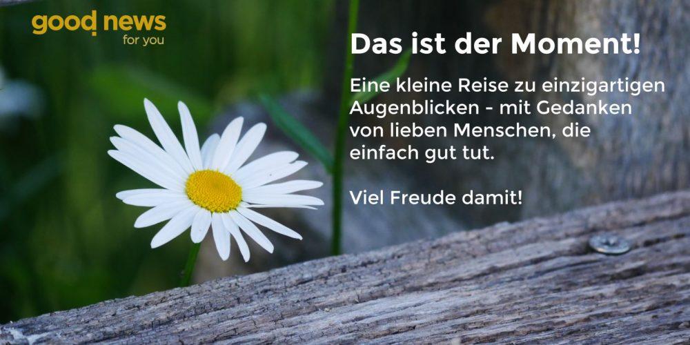 Thumbnail_Zuversichtsgalerie_DE_210121b