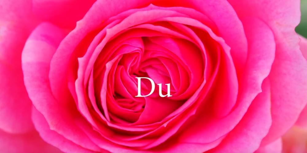 good news-Du